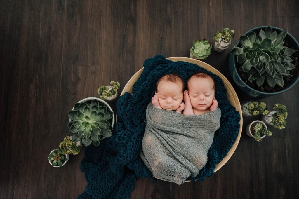 twins in basket