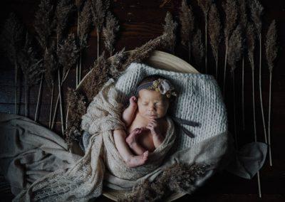 tessa newborn 08